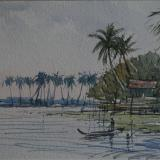 Backwaters, Allepy, Kerala, India